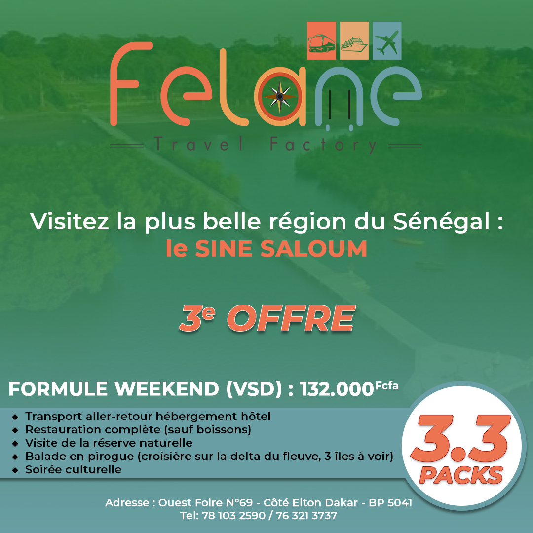 Felane Travel Factory Pack 3